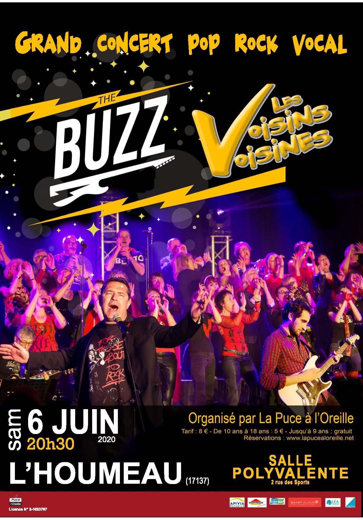 20 06 06 Affiche A3 Buzz VV L'HOUMEAU